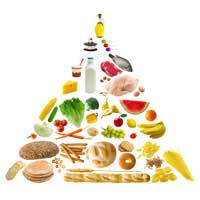 Everyday Diet Food Pyramid Nutrition